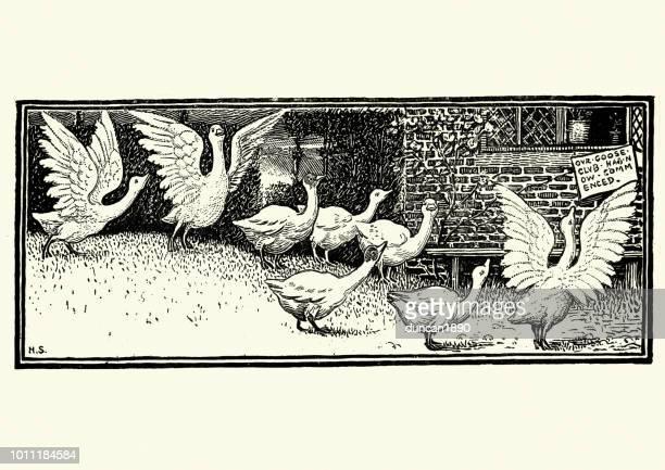 19 世紀のガチョウの群れ - 水鳥点のイラスト素材/クリップアート素材/マンガ素材/アイコン素材