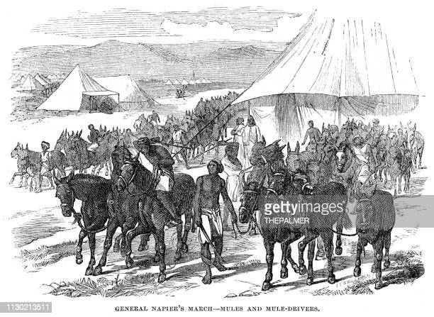 General Napier march engraving 1868