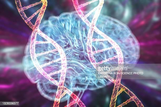genetic brain disorders, conceptual illustration - neuropathy stock illustrations