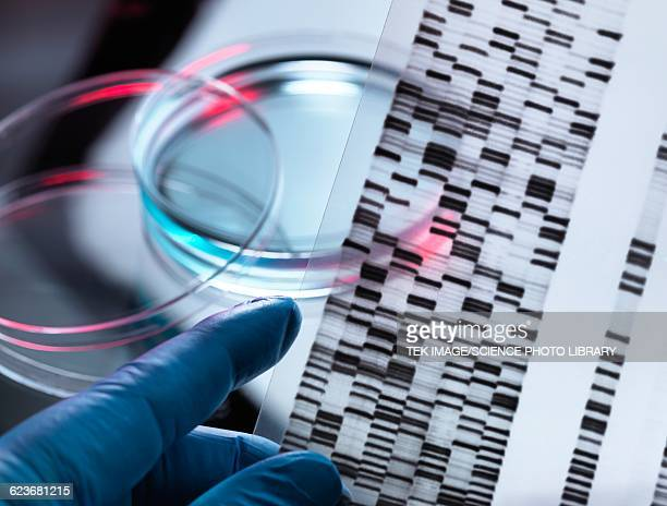 genetic research - incidental people stock illustrations