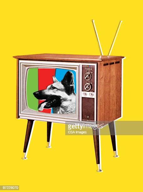 german shepherd dog on tv screen - 1990 1999 stock illustrations