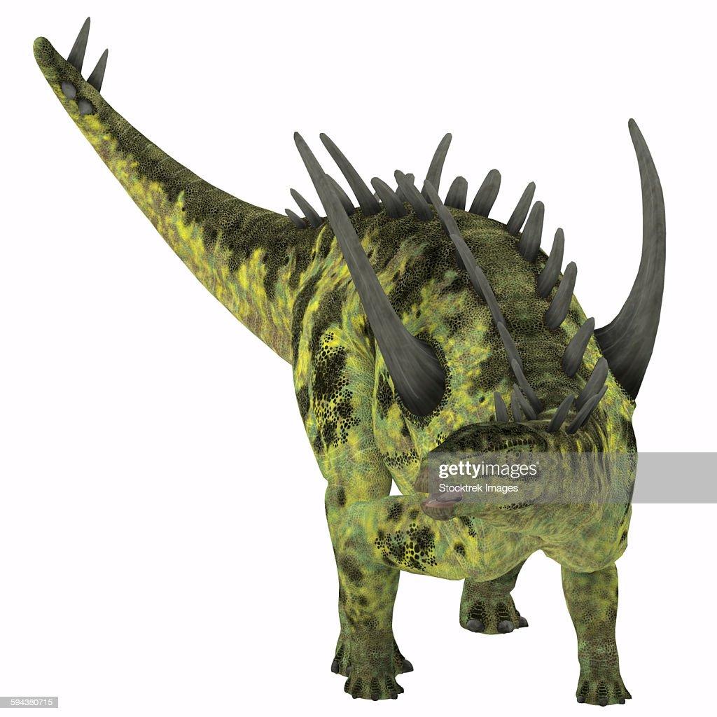 Gigantspinosaurus dinosaur, white background. : stock illustration