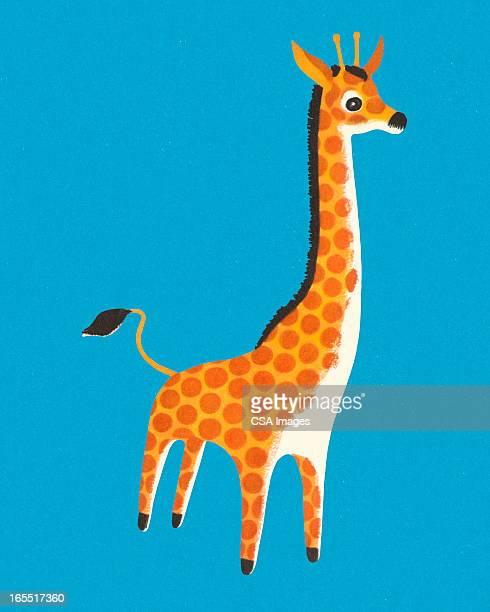 Giraffe on a Blue Background