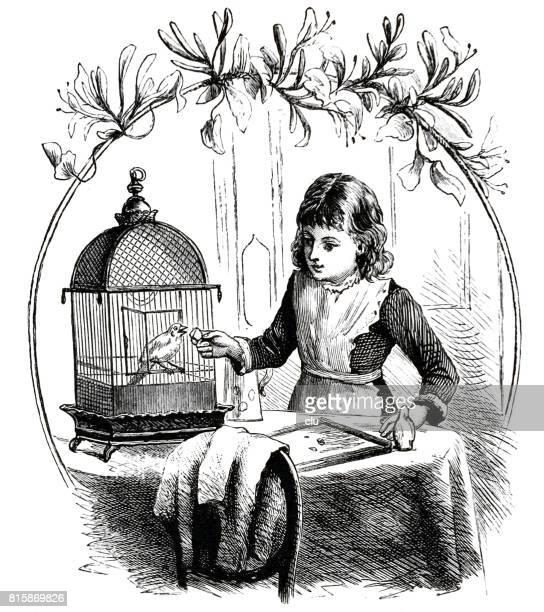 Girl feeding the canary in birdcage