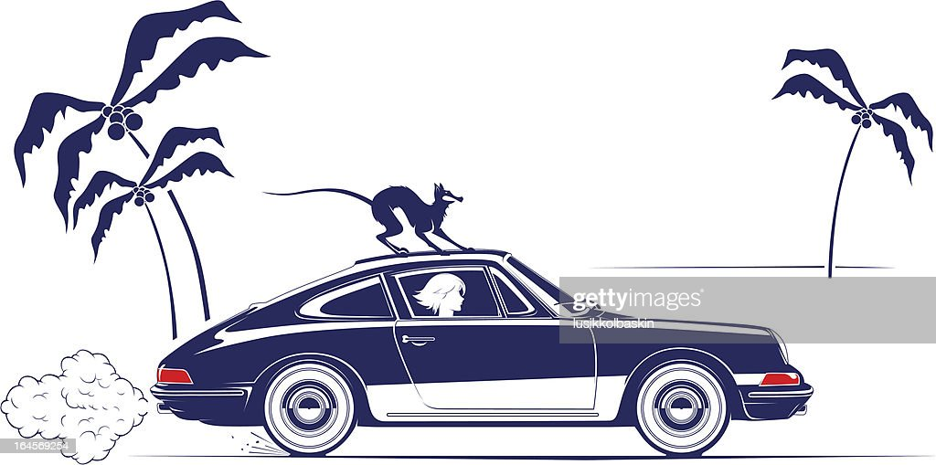 girl in retro car and cat on the roof