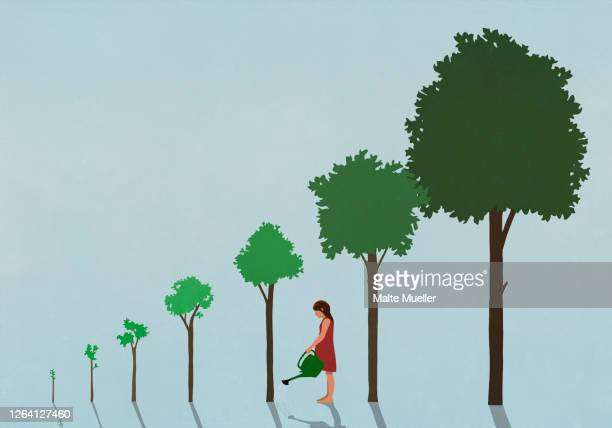 girl watering sequence of growing trees - leisure activity stock illustrations