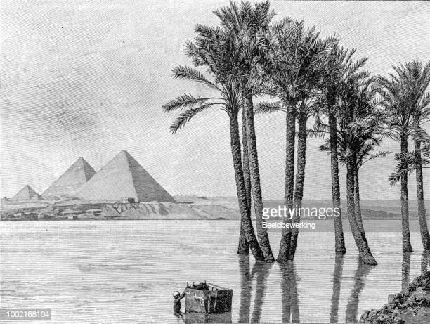 1895 年にギザのピラミッド エジプト - ナイル川点のイラスト素材/クリップアート素材/マンガ素材/アイコン素材