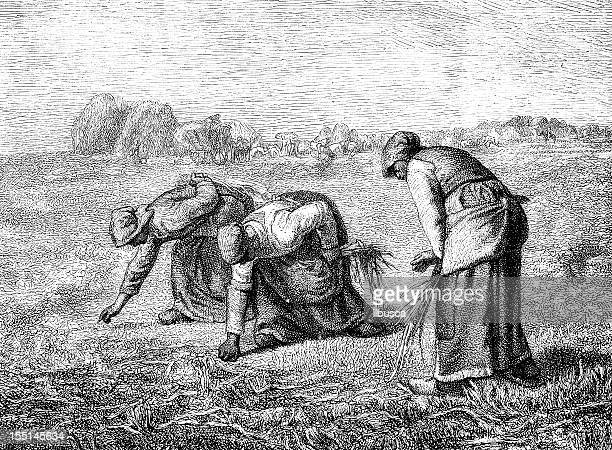 gleaners by millet - millet stock illustrations
