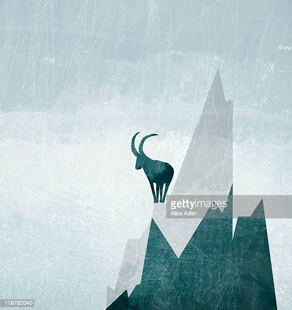 A goat on the side of a snowcapped mountain
