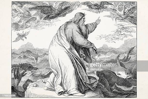 god creating lives in the water and sky day 5 - old testament stock illustrations