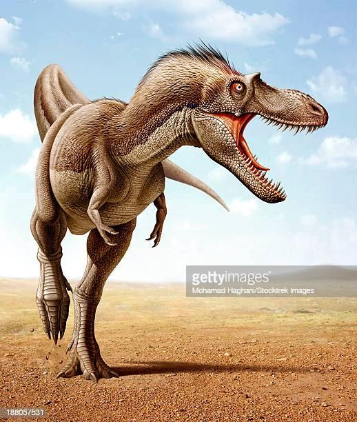 Gorgosaurus running across an open desert.