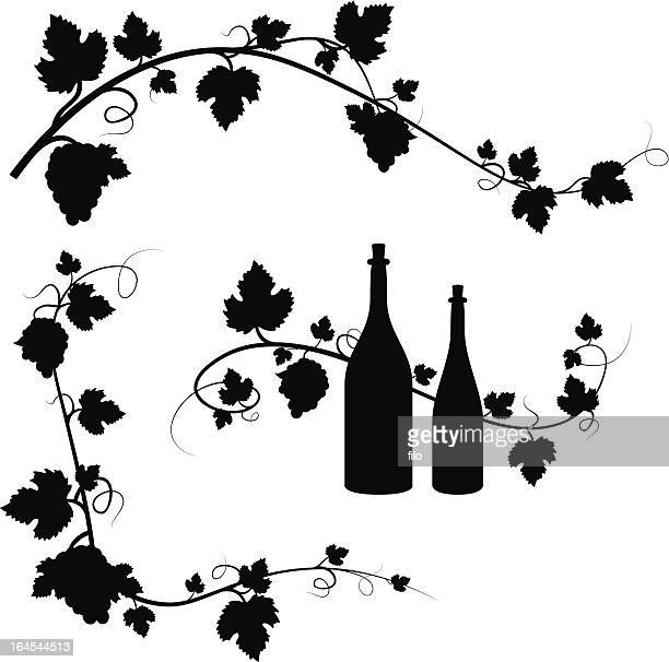grape and wine decorations - vine stock illustrations