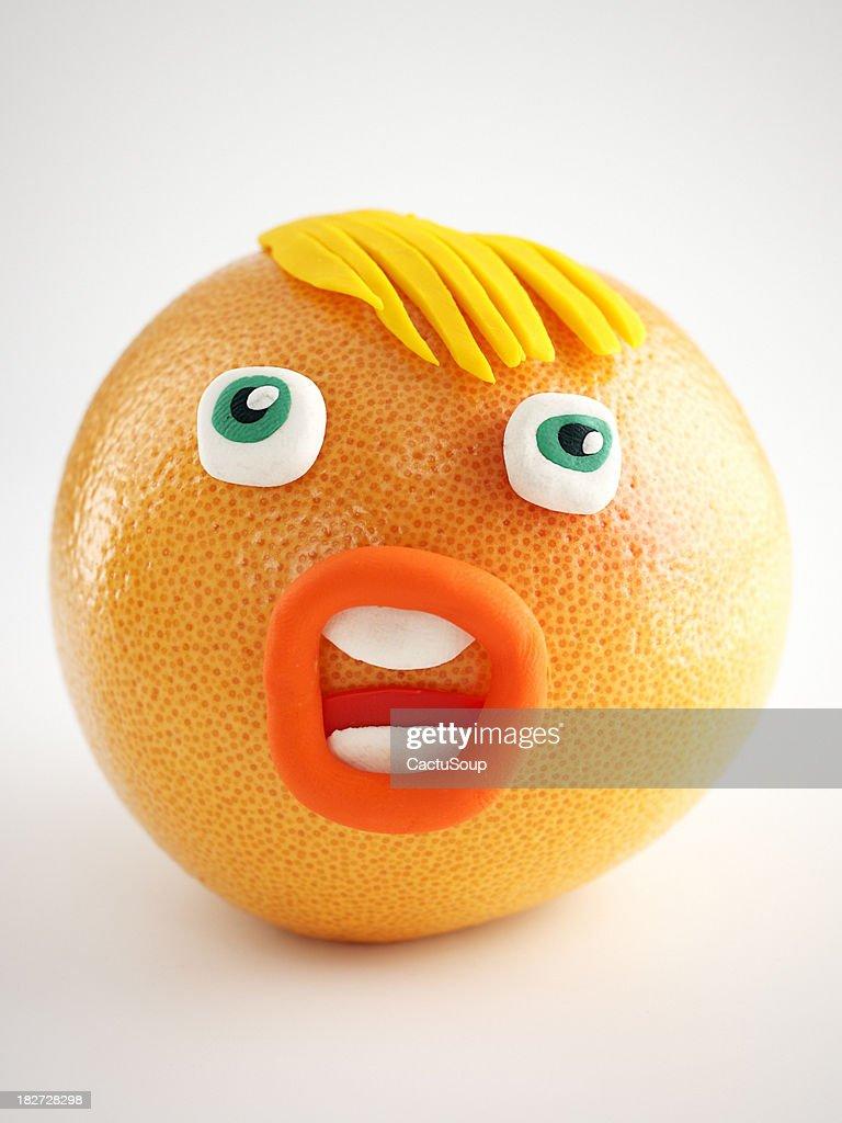 Grapefruit Portrait : stock illustration