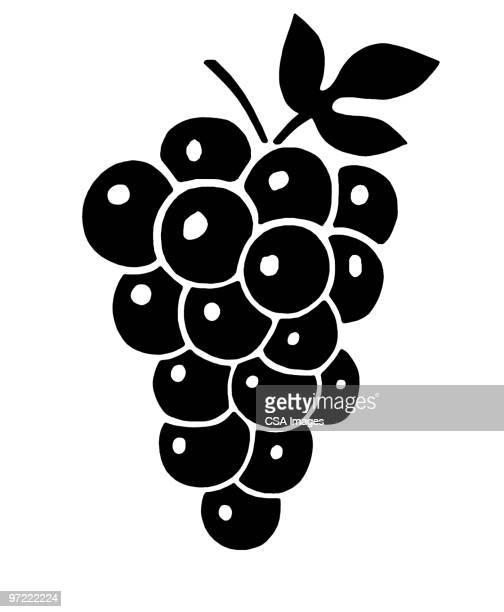grapes - grape stock illustrations, clip art, cartoons, & icons