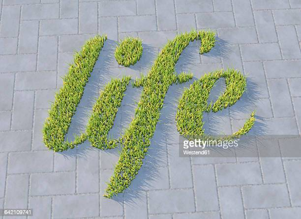 grass growing on concrete, life - beauty stock illustrations