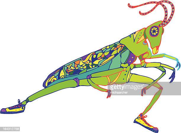 Grasshopper in Sneakers