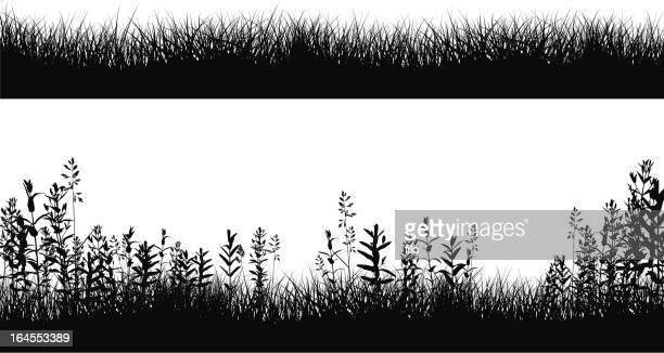grassy field border silhouettes - grass stock illustrations