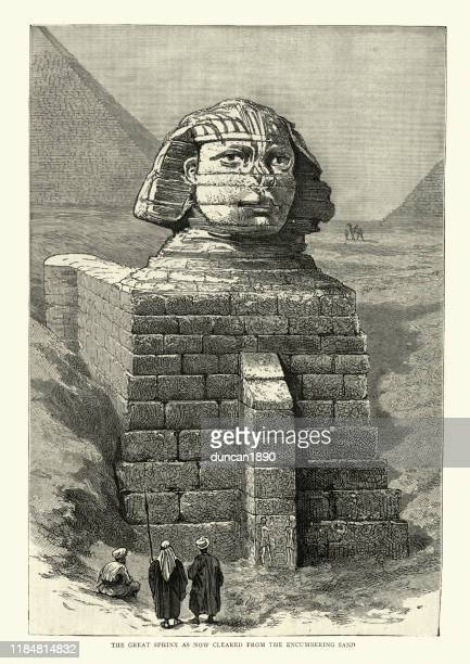 great sphinx cleared from encumbering sand, 1886, 19th century - 19th century stock illustrations