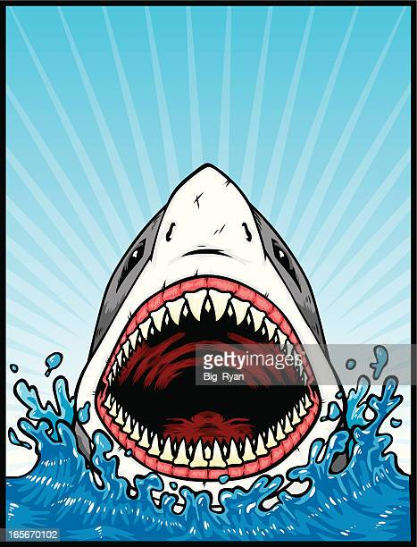 great white attack - sharks stock illustrations