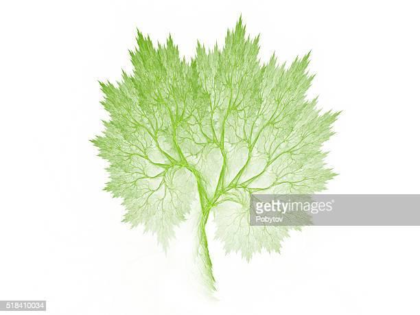 Green fractal tree