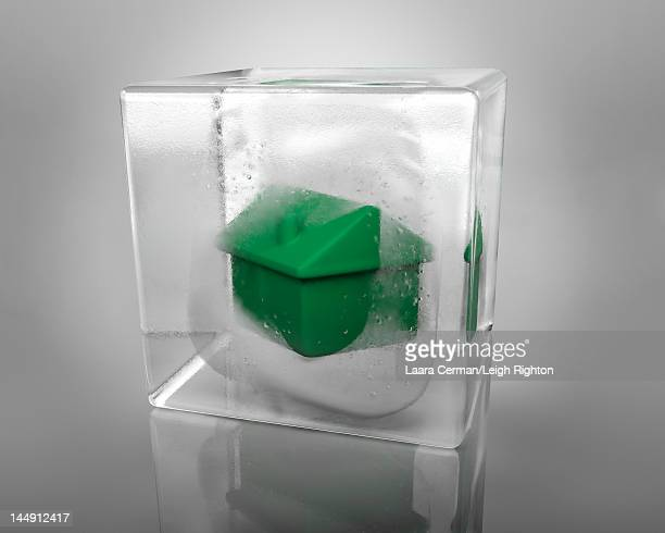 A green house frozen in an ice cube.