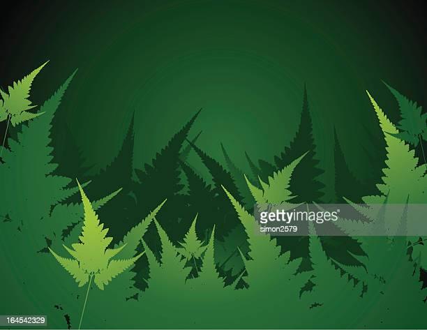 illustrazioni stock, clip art, cartoni animati e icone di tendenza di astratto verde foglia - concetti e temi