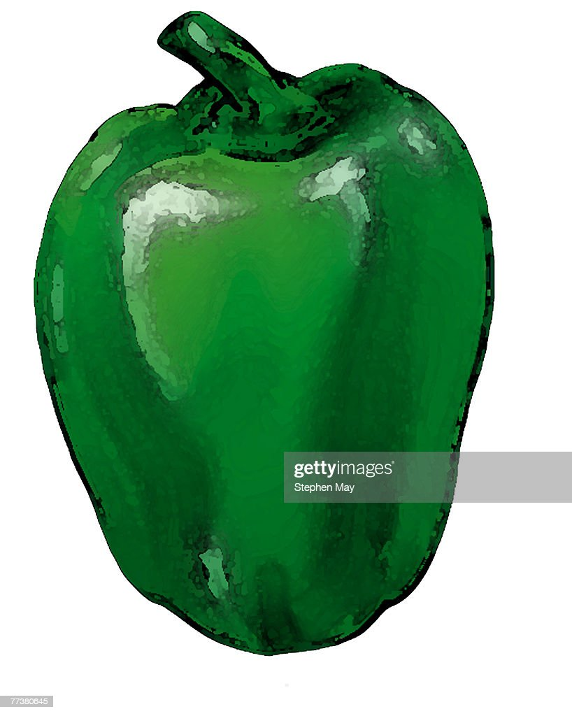 A green pepper drawn over a white background : Illustration