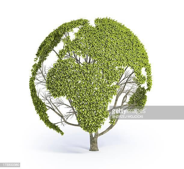 illustrazioni stock, clip art, cartoni animati e icone di tendenza di green planet, conceptual artwork - continente area geografica