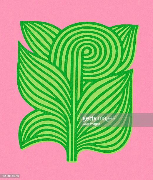 green plant - illustration technique stock illustrations