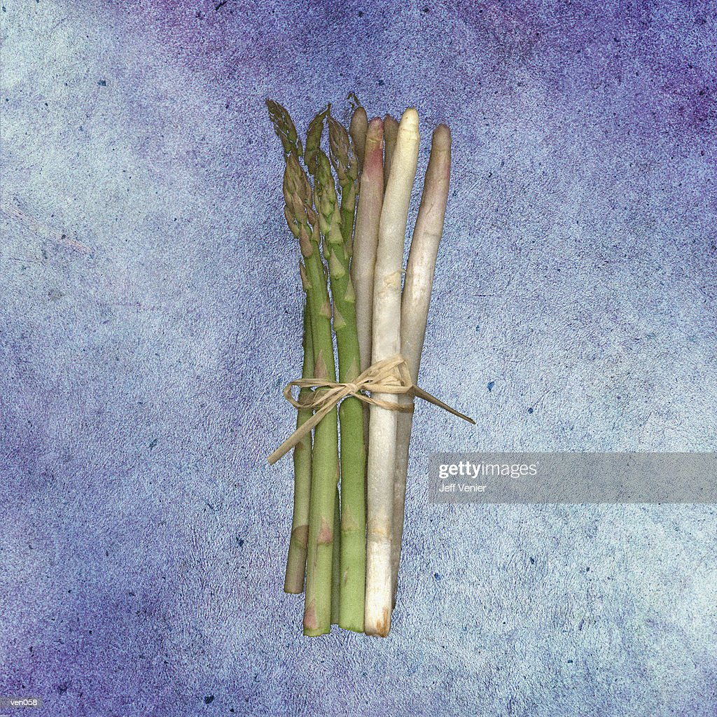 Green & White Asparagus : Stock Illustration