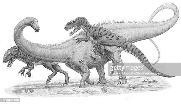 A group of Allosaurus attack a giant Diplodocus dinosaur.