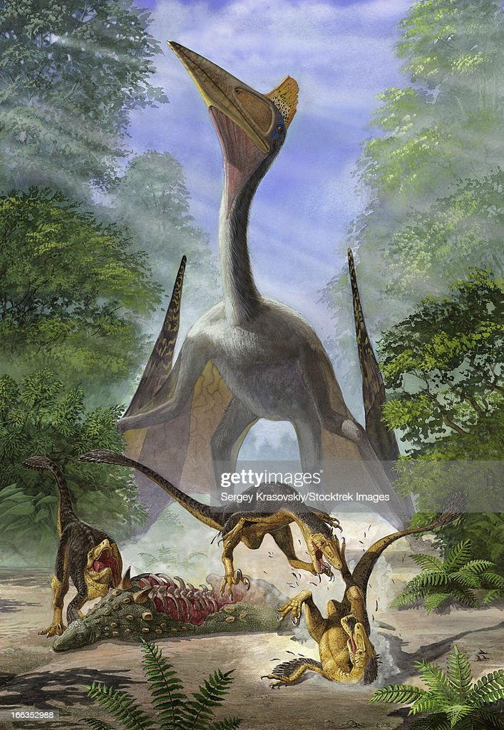 A group of Balaur bondoc dinosaurs fight for the corpse of a Struthiosaurus. : stock illustration