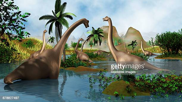 Group of Brachiosaurus dinosaurs grazing in a prehistoric environment.