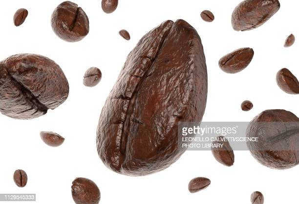 group of coffee beans falling, illustration - roasted coffee bean stock illustrations