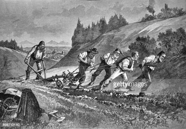 group of men pulled a plough behind them in the field - 1896 - 1896 stock illustrations, clip art, cartoons, & icons