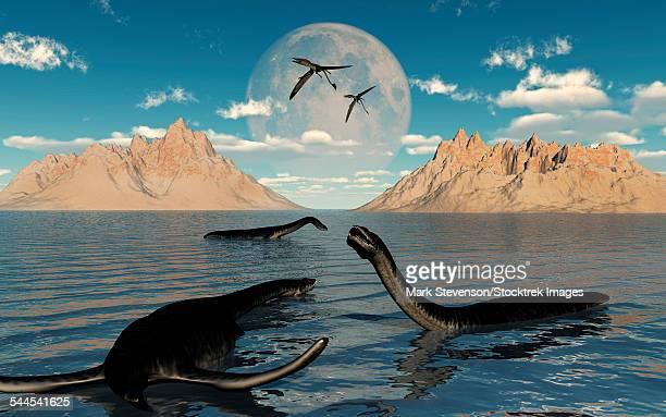 ilustraciones, imágenes clip art, dibujos animados e iconos de stock de a group of plesiosaurs relaxing on a jurassic day. - plesiosaurio