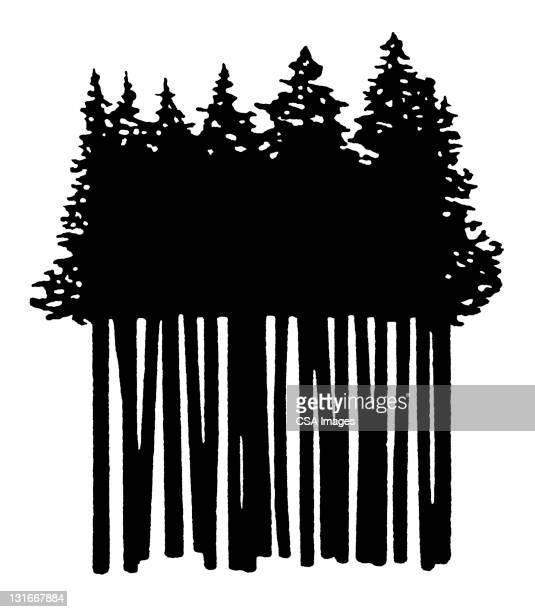 grove of trees - design element stock illustrations