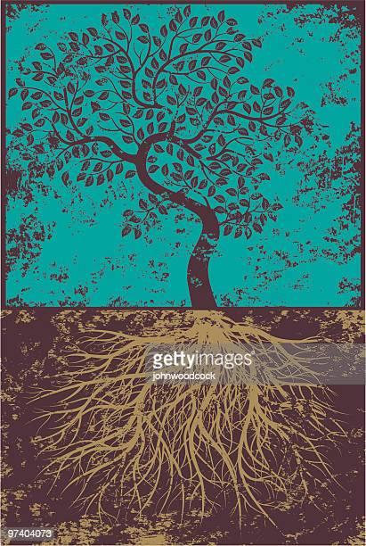 Grunge bent tree und Wurzeln