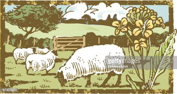 grunge landscape - sheep stock illustrations, clip art, cartoons, & icons