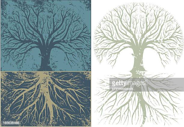 grunge rooty tree - root stock illustrations, clip art, cartoons, & icons