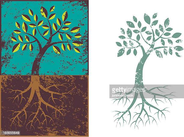 grunge tree and roots. - root stock illustrations, clip art, cartoons, & icons