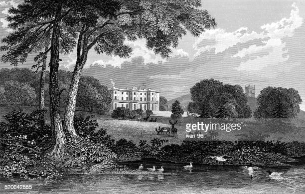 haigh-hall, lancashire - corridor stock illustrations, clip art, cartoons, & icons