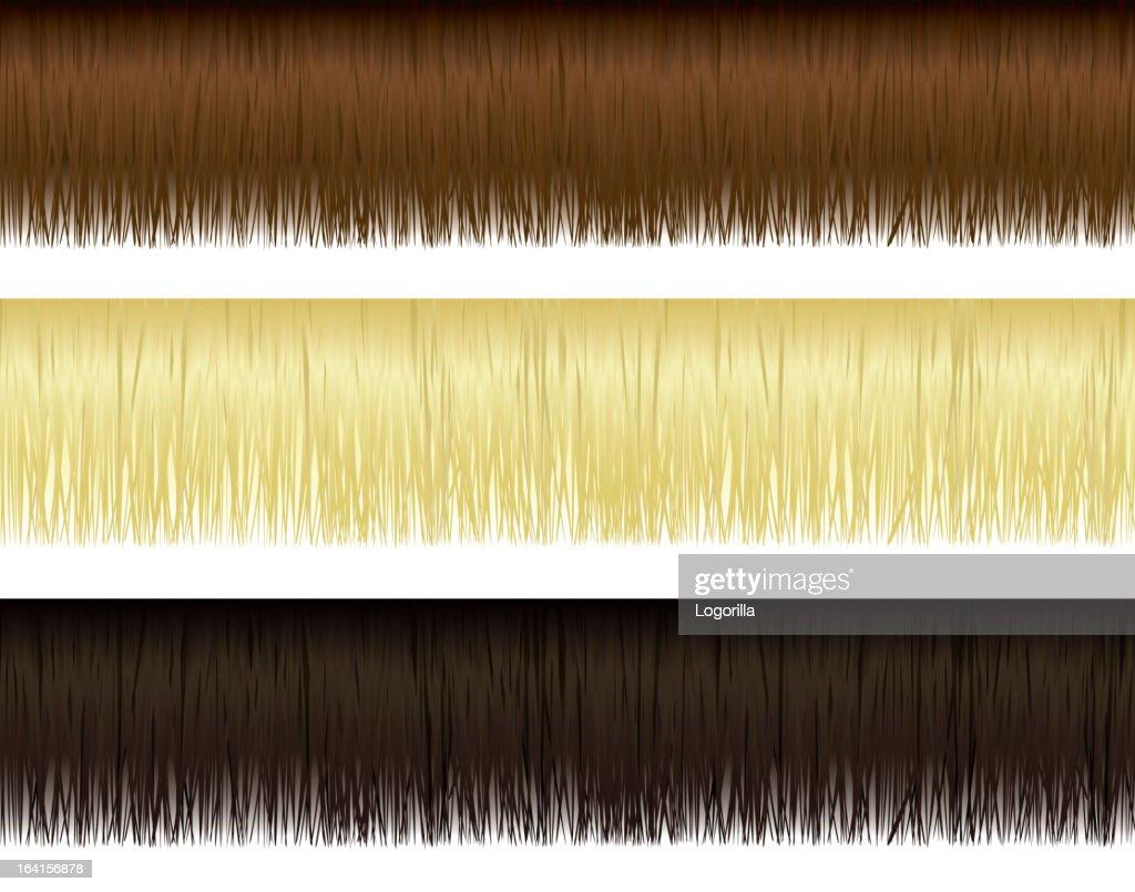 Hair Borders : stock illustration