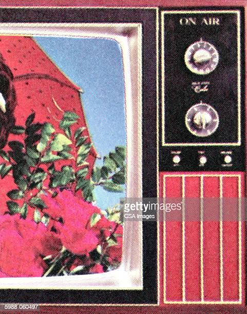 half of a television - voyeurism stock illustrations, clip art, cartoons, & icons