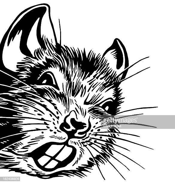 Illustrations et dessins anim s de hamster getty images - Hamster dessin anime ...
