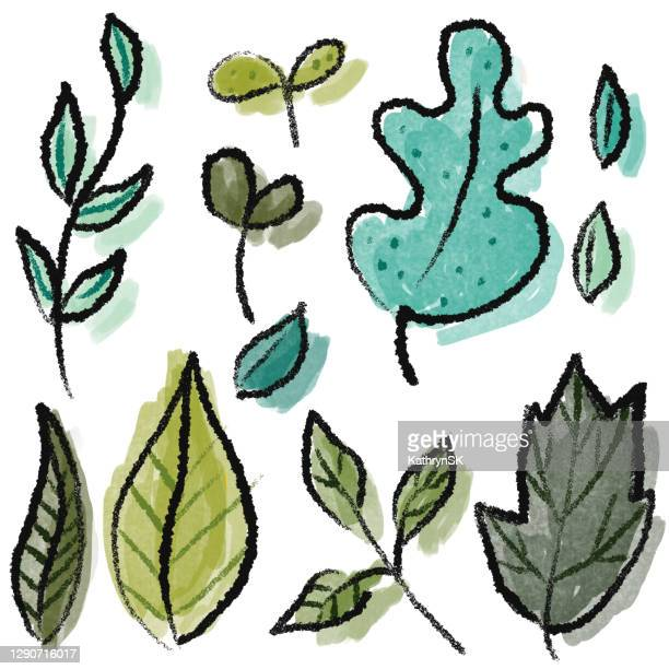hand drawn group of leaves - kathrynsk stock illustrations