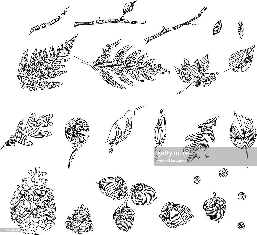 Hand drawn intricate autumn designs
