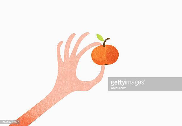 A hand holding an orange against white background