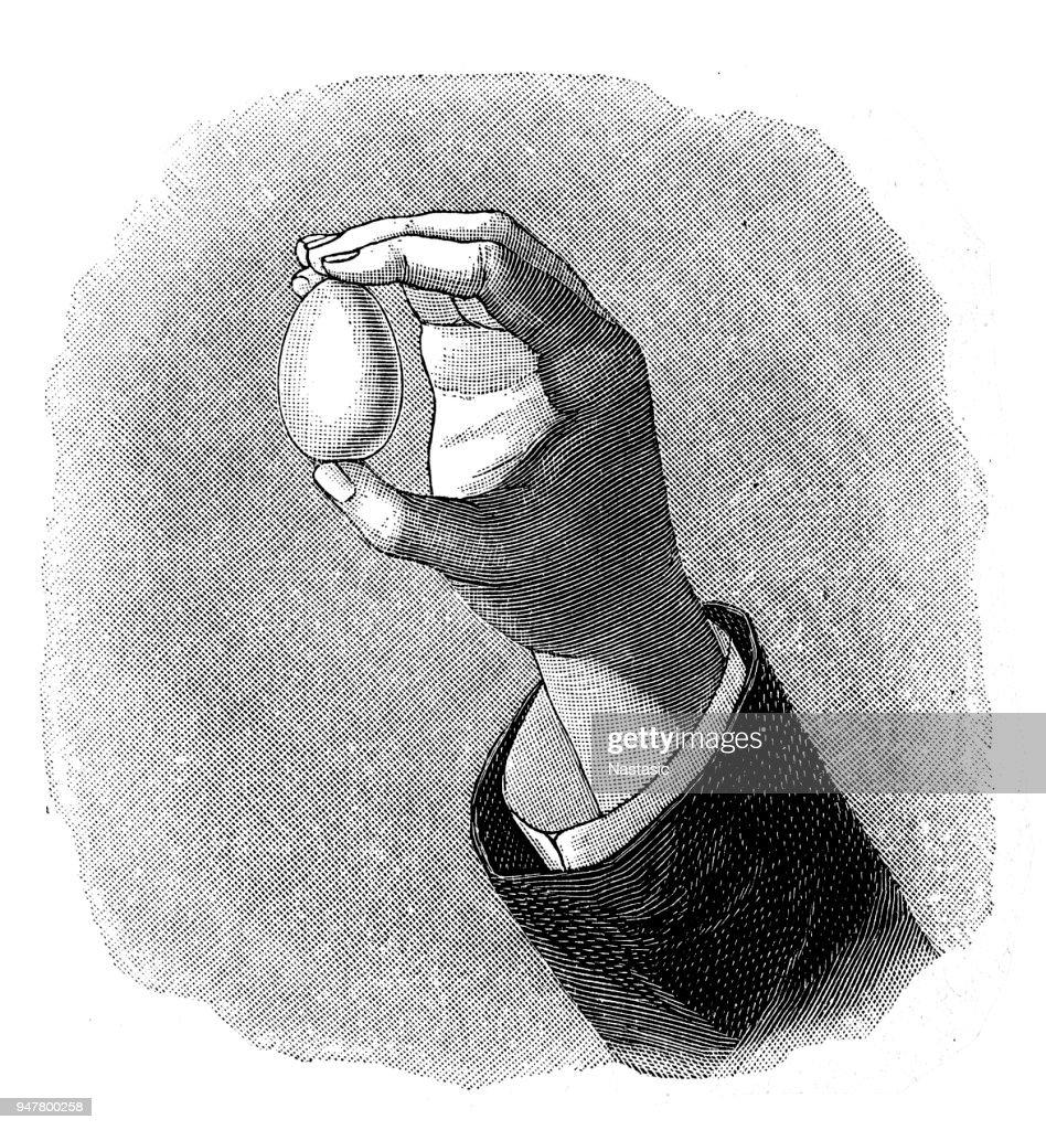 Mão segurando um ovo : Ilustração
