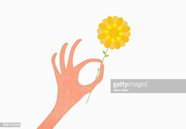 hand holding yellow against white background - illustration technique stock illustrations